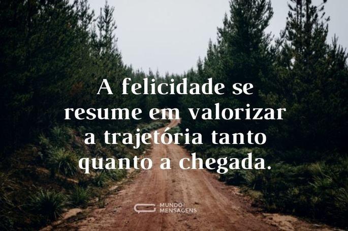 A felicidade se resume em valorizar a trajetória tanto quanto a chegada.