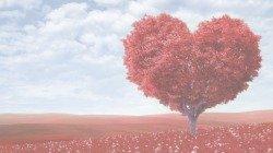 35 frases apaixonantes de amor verdadeiro