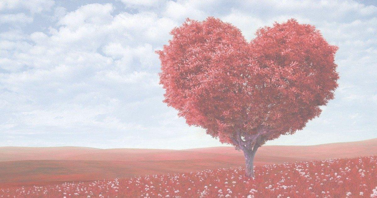 35 Frases Apaixonantes De Amor Verdadeiro Mundo Das Mensagens