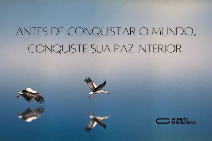 Antes de conquistar o mundo, conquiste sua paz interior.
