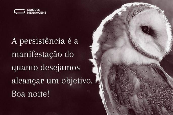 A persistência é a manifestação do quanto desejamos alcançar um objetivo. Boa noite!