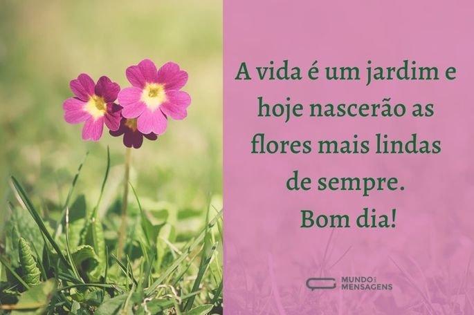 a vida é um jardim e hoje nascerão