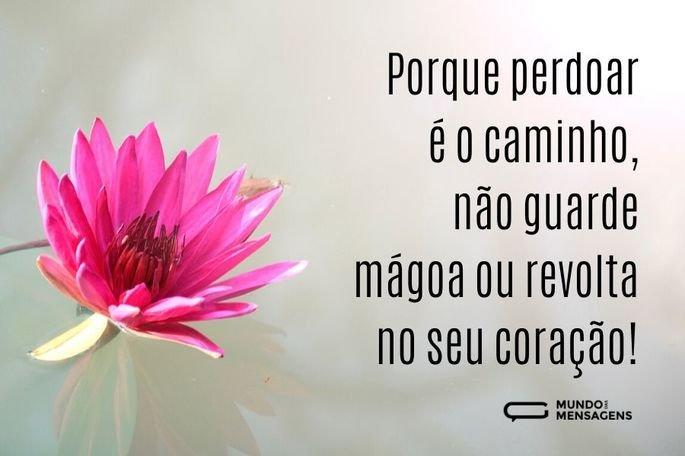 Porque perdoar é o caminho, não guarde mágoa ou revolta no coração!
