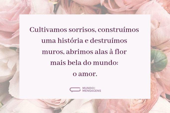 Cultivamos sorrisos, construímos uma história e destruímos muros, abrimos alas à flor mais bela do mundo: o amor.