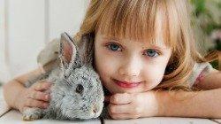 Desejar Feliz Páscoa