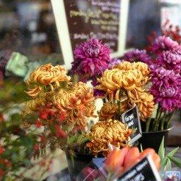 Como comemorar aniversário de namoro: ideias para surpreender o seu amor