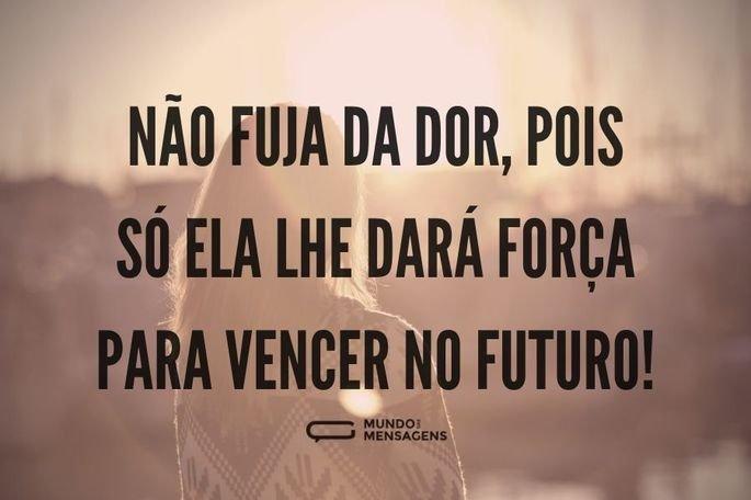Não fuja da dor, pois só ela lhe dará força para vencer no futuro!