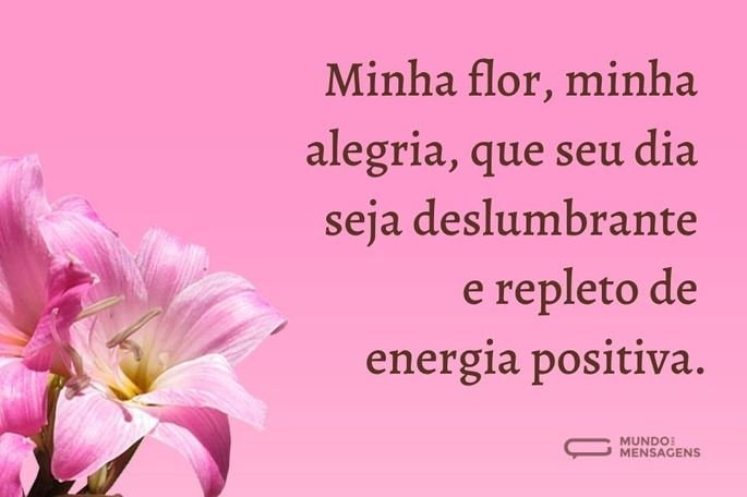 minha flor, minha alegria, que seu dia