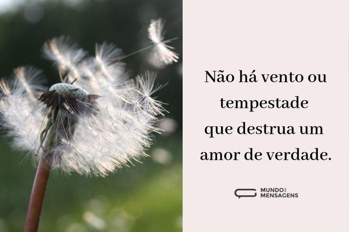 Não há vento ou tempestade que destrua um amor de verdade.