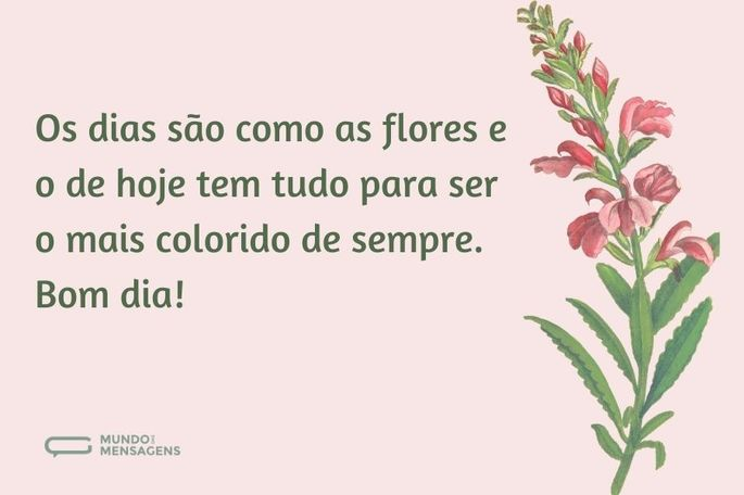 os dias são como as flores e o de hoje