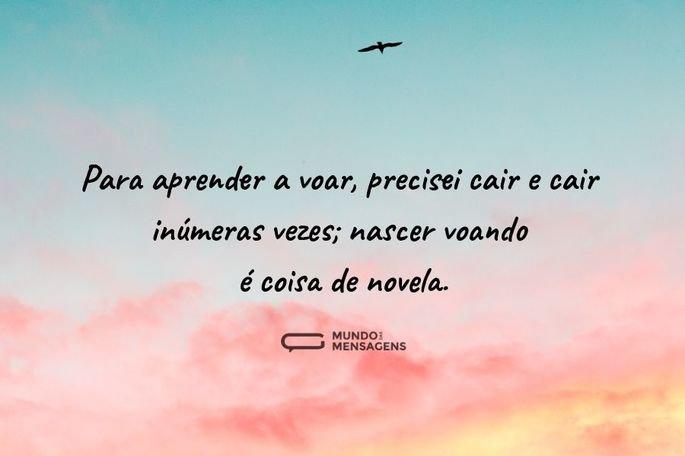 Para aprender a voar, precisei cair e cair inúmeras vezes; nascer voando é coisa de novela.