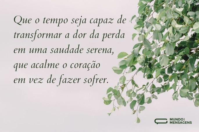 Que o tempo seja capaz de transformar a dor da perda em uma saudade serena, que acalme o coração em vez de fazer sofrer.