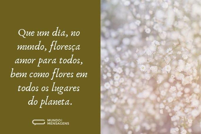 Que um dia, no mundo, floresça amor para todos, bem como flores em todos os lugares do planeta.