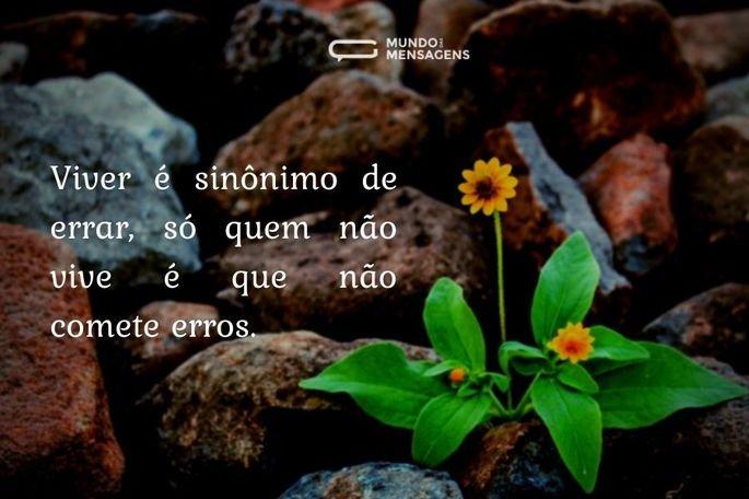sabedoria 006_02