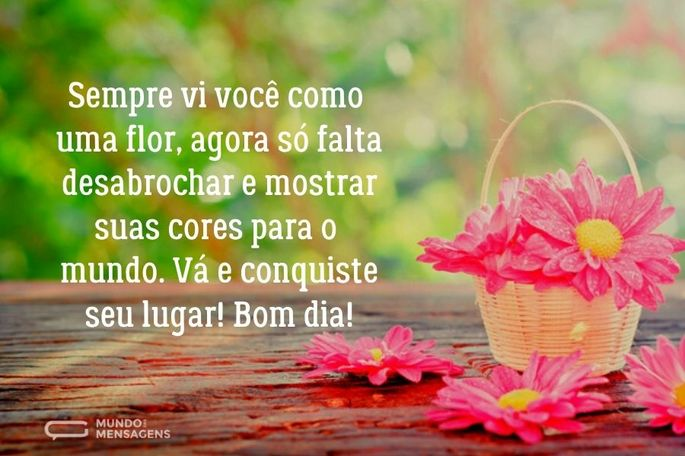 Sempre vi você como uma flor, agora só falta desabrochar e mostrar suas cores para o mundo. Vá e conquiste seu lugar! Bom dia!