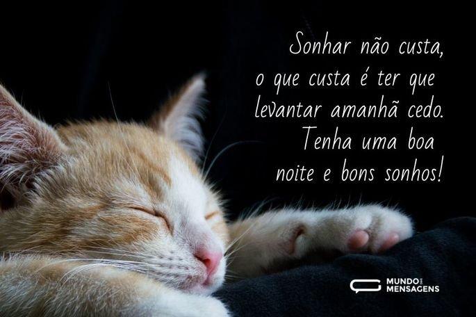Sonhar não custa, o que custa é ter que levantar amanhã cedo. Tenha uma boa noite e bons sonhos!
