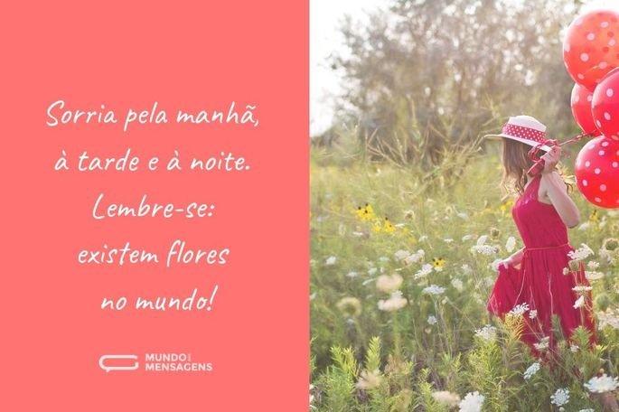 Sorria pela manhã, à tarde e à noite. Lembre-se: existem flores no mundo!