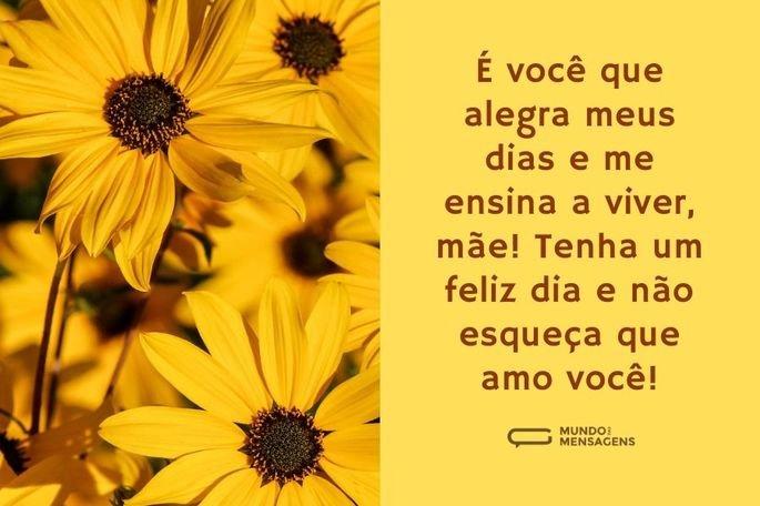 É você que alegra meus dias e me ensina a viver, mãe! Tenha um feliz dia e não esqueça que amo você!