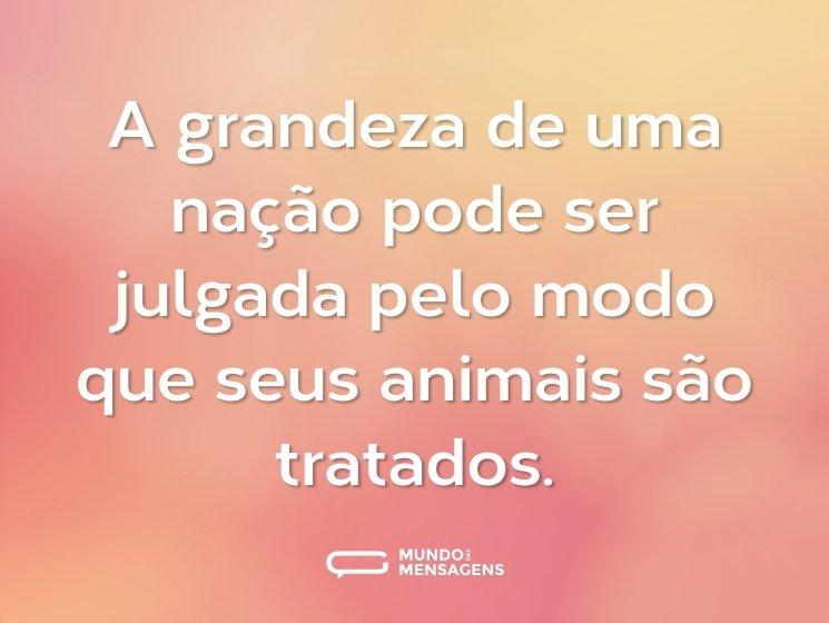 A grandeza de uma nação pode ser julgada pelo modo que seus animais são tratados.