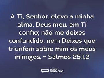 A Ti, Senhor, elevo a minha alma. Deus meu, em Ti confio; não me deixes confundido, nem Deixes que triunfem sobre mim os meus inimigos.  - Salmos 25:1,2