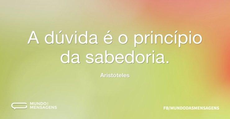 A dúvida é o princípio da sabedoria...