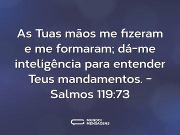 As Tuas mãos me fizeram e me formaram; dá-me inteligência para entender Teus mandamentos.  - Salmos 119:73