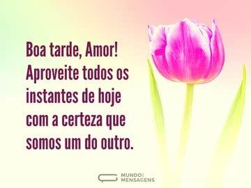 mensagem de boa tarde com amor - boa tarde amor aproveite todos