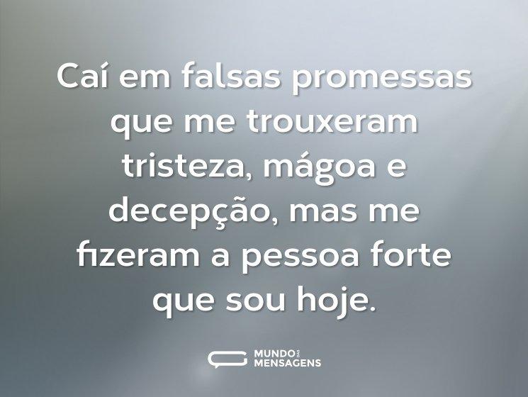 Caí em falsas promessas que me trouxeram tristeza, mágoa e decepção, mas me fizeram a pessoa forte que sou hoje.