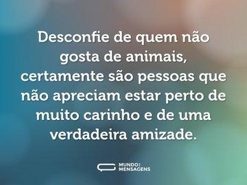 Desconfie de quem não gosta de animais, certamente são pessoas que não apreciam estar perto de muito carinho e de uma verdadeira amizade.
