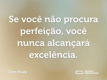 Se você não procura perfeição, você nunca alcançará excelência.