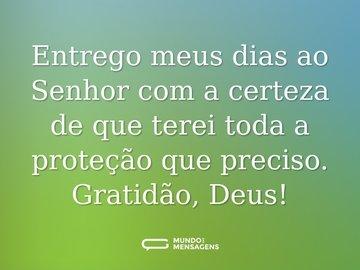 Entrego meus dias ao Senhor com a certeza de que terei toda a proteção que preciso. Gratidão, Deus!