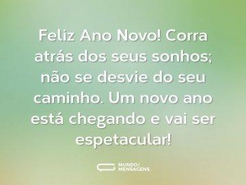 Feliz Ano Novo! Corra atrás dos seus sonhos; não se desvie do seu caminho. Um novo ano está chegando e vai ser espetacular!