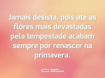 Jamais desista, pois até as flores mais devastadas pela tempestade acabam sempre por renascer na primavera.