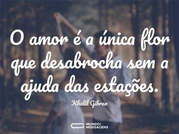 O amor é a única flor que desabrocha sem a ajuda das estações.