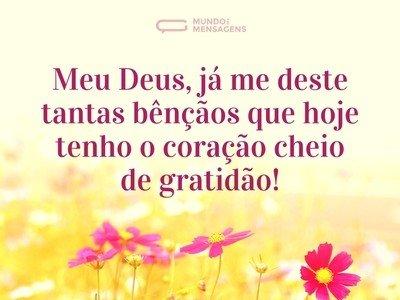 Tenho o coração cheio de gratidão a Deus