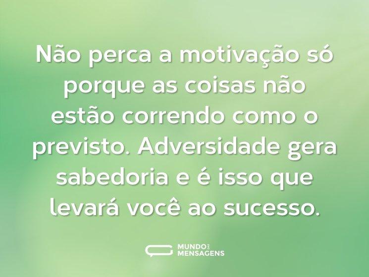 Não perca a motivação só porque as coisas não estão correndo como o previsto. Adversidade gera sabedoria e é isso que levará você ao sucesso.