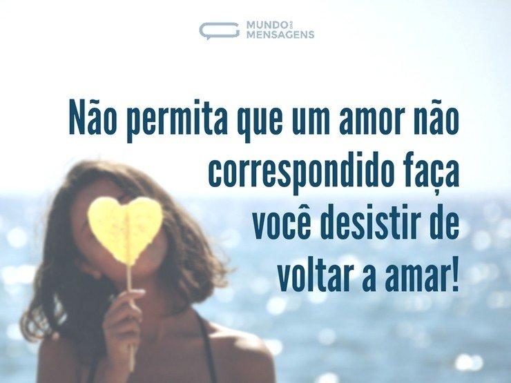 Nunca Desista Do Seu Amor: Nunca Desista De Amar