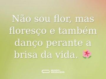 Não sou flor, mas floresço e também danço perante a brisa da vida. 🌺