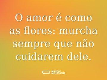 O amor é como as flores: murcha sempre que não cuidarem dele.