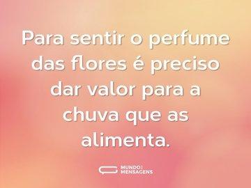 Para sentir o perfume das flores é preciso dar valor para a chuva que as alimenta.