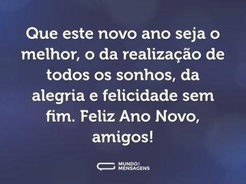 Que este novo ano seja o melhor, o da realização de todos os sonhos, da alegria e felicidade sem fim. Feliz Ano Novo, amigos!