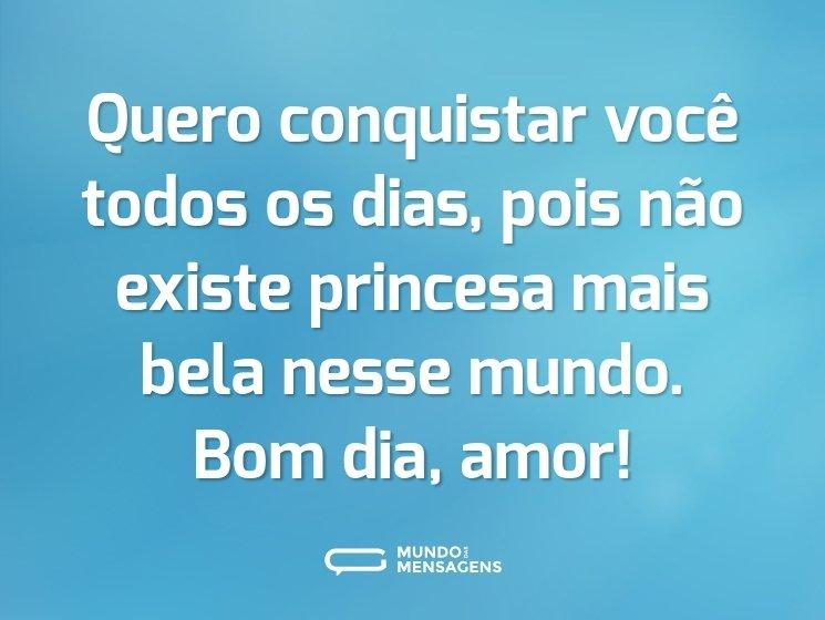 Quero conquistar você todos os dias, pois não existe princesa mais bela nesse mundo. Bom dia, amor!