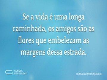 Se a vida é uma longa caminhada, os amigos são as flores que embelezam as margens dessa estrada.