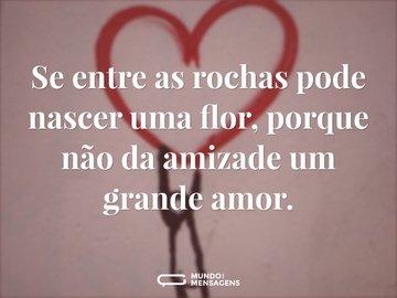 Se entre as rochas pode nascer uma flor, porque não da amizade um grande amor.
