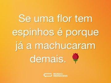 Se uma flor tem espinhos é porque já a machucaram demais. 🌹