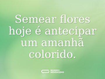 Semear flores hoje é antecipar um amanhã colorido.