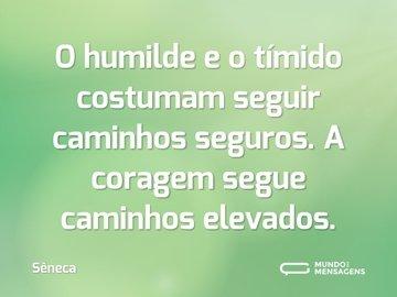 O humilde e o tímido costumam seguir caminhos seguros. A coragem segue caminhos elevados.