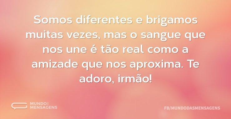 Somos diferentes e brigamos muitas vezes...
