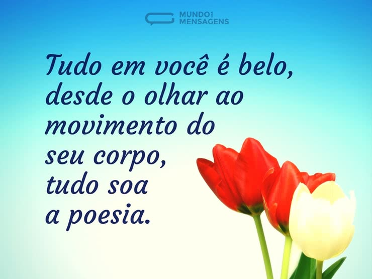 A Poesia no Olhar
