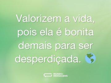 Valorizem a vida, pois ela é bonita demais para ser desperdiçada. 🌎
